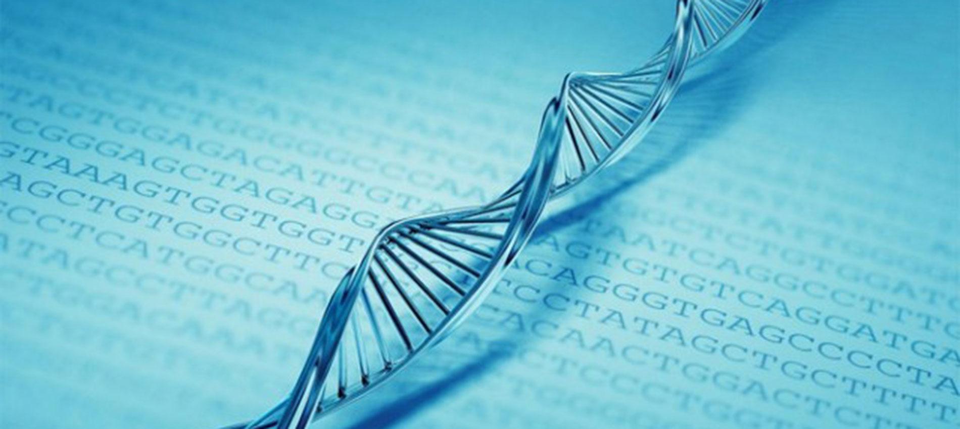 test genetici gilardi sara nutrizionista