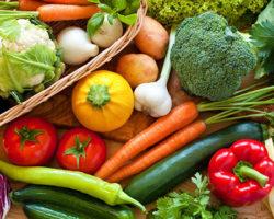 Conferenza sull'alimentazione vegetariana